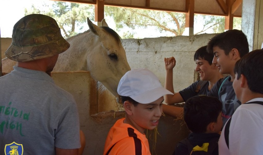 Year 2 Educational Trip - Riverland