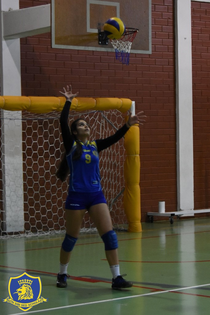 Varsity Girls Volleyball 2018